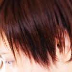 軽やかヘアは、毛流れがきれい。